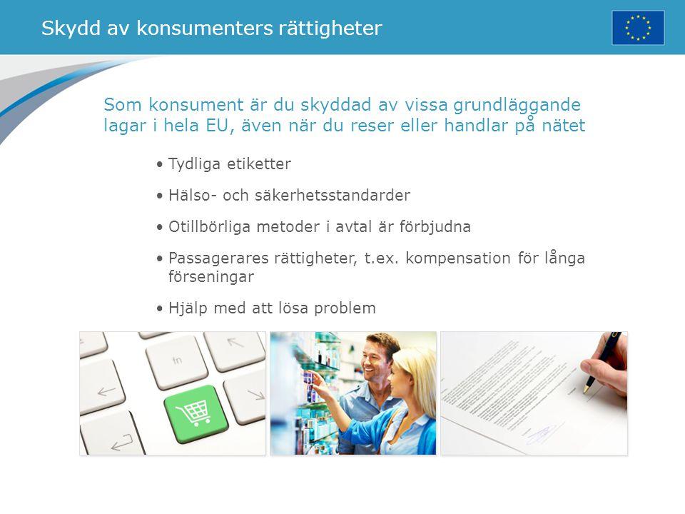 Skydd av konsumenters rättigheter Tydliga etiketter Hälso- och säkerhetsstandarder Otillbörliga metoder i avtal är förbjudna Passagerares rättigheter,