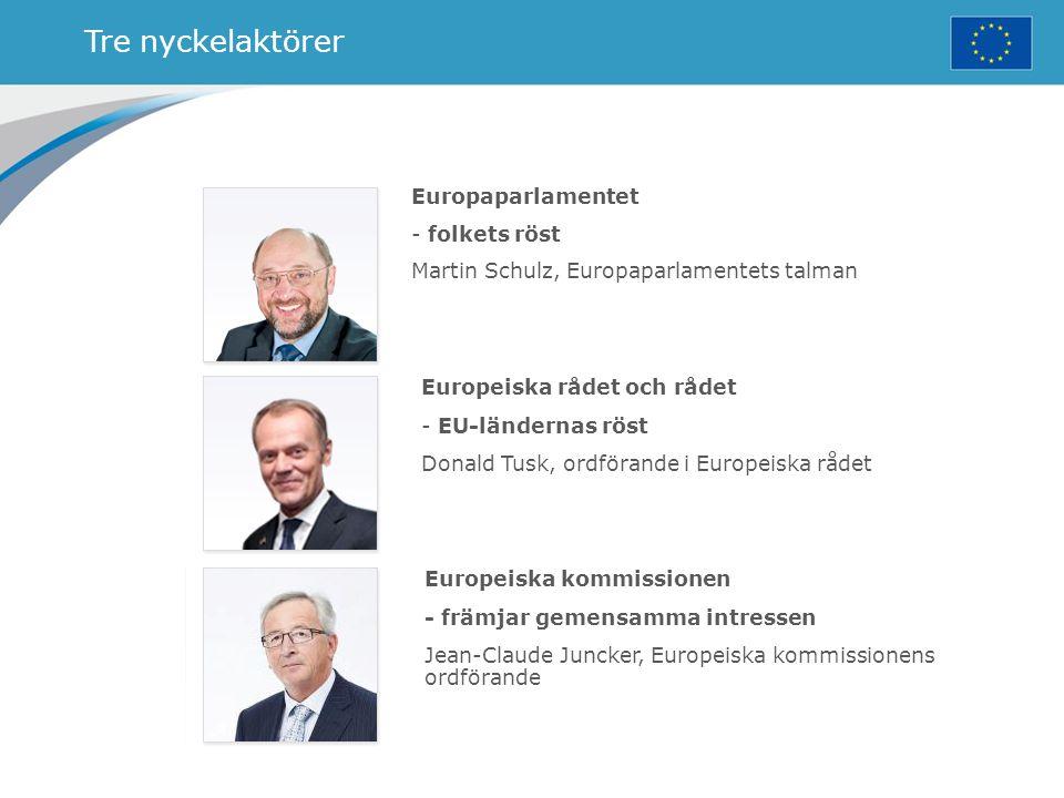 Tre nyckelaktörer Europaparlamentet - folkets röst Martin Schulz, Europaparlamentets talman Europeiska rådet och rådet - EU-ländernas röst Donald Tusk