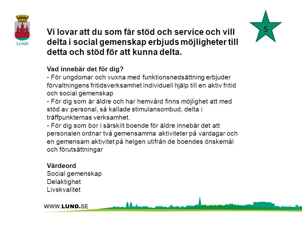 Vi lovar att du som får stöd och service och vill delta i social gemenskap erbjuds möjligheter till detta och stöd för att kunna delta. Vad innebär de