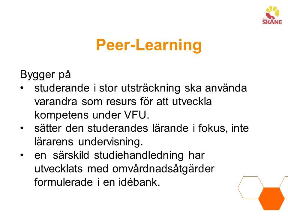 Peer-Learning Bygger på studerande i stor utsträckning ska använda varandra som resurs för att utveckla kompetens under VFU. sätter den studerandes lä