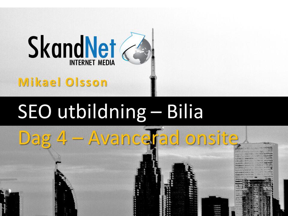 Mikael Olsson SEO utbildning – Bilia Dag 4 – Avancerad onsite