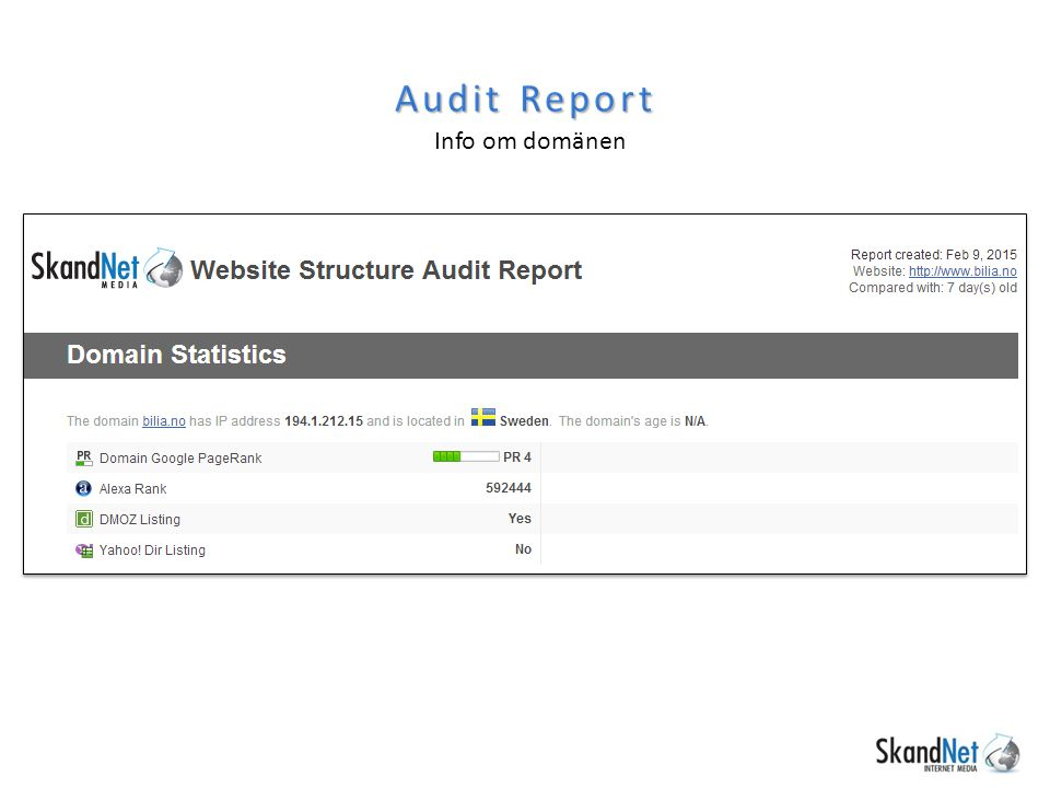 Audit Report Info om domänen