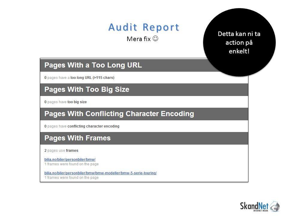 Audit Report Mera fix Detta kan ni ta action på enkelt!
