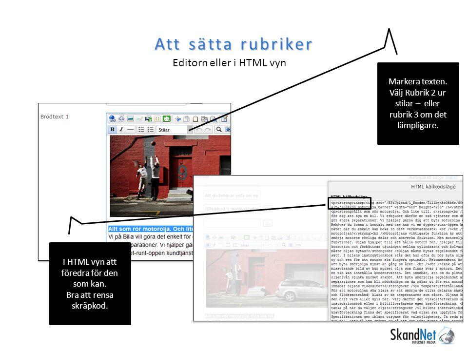 Att sätta rubriker Editorn eller i HTML vyn Markera texten.