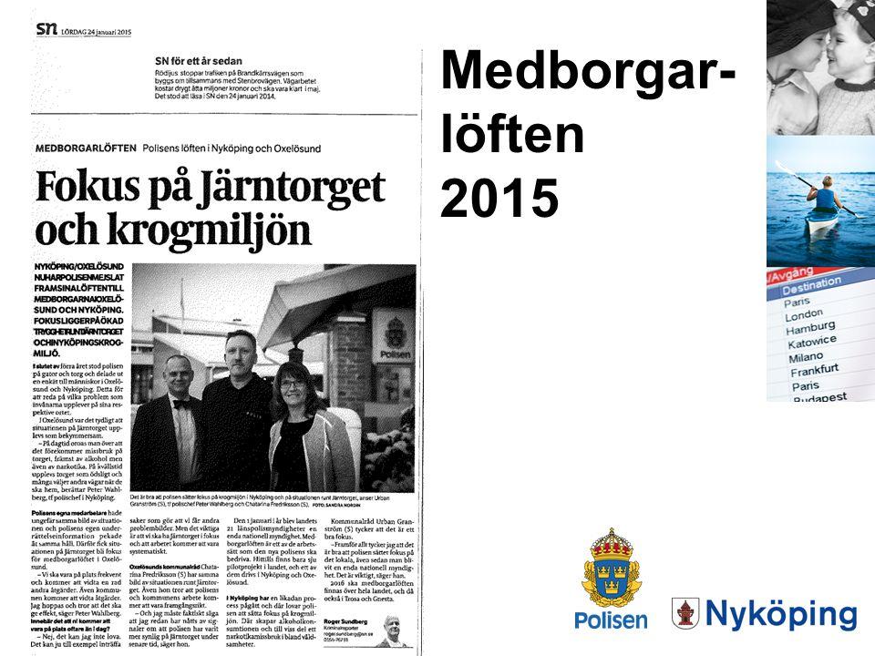 Medborgar- löften 2015