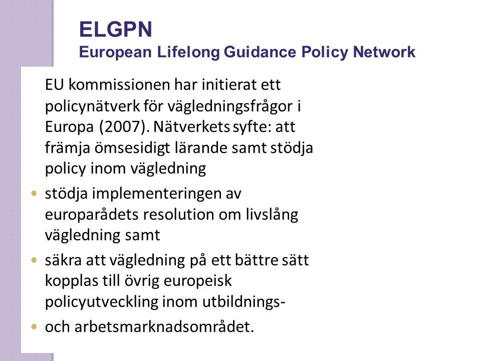 EU kommissionen har initierat ett policynätverk för vägledningsfrågor i Europa (2007). Nätverkets syfte: att främja ömsesidigt lärande samt stödja pol