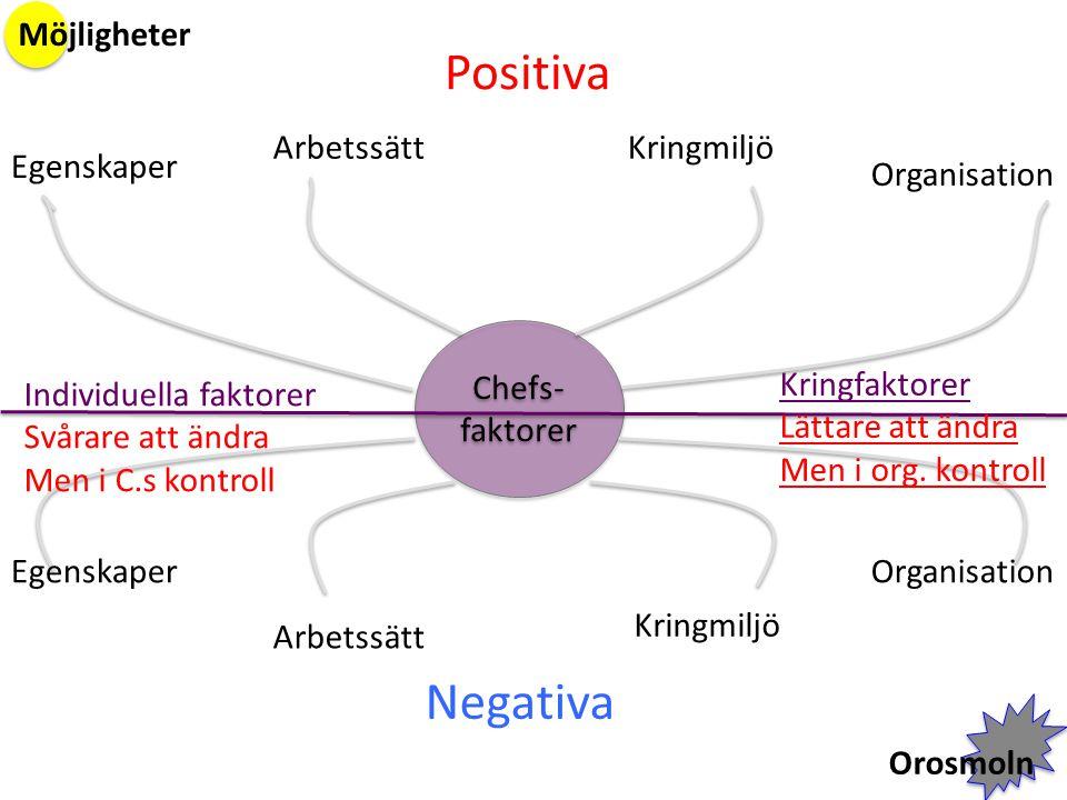 Chefs- faktorer Positiva Negativa Egenskaper ArbetssättKringmiljö Organisation Arbetssätt Kringmiljö Möjligheter Orosmoln Individuella faktorer Svårar