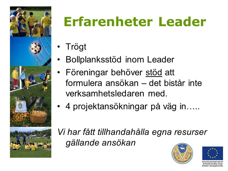 Erfarenheter Leader Trögt Bollplanksstöd inom Leader Föreningar behöver stöd att formulera ansökan – det bistår inte verksamhetsledaren med. 4 projekt