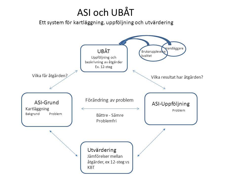 ASI-Grund Kartläggning Bakgrund Problem ASI-Uppföljning Problem UBÅT Uppföljning och beskrivning av åtgärder Ex.