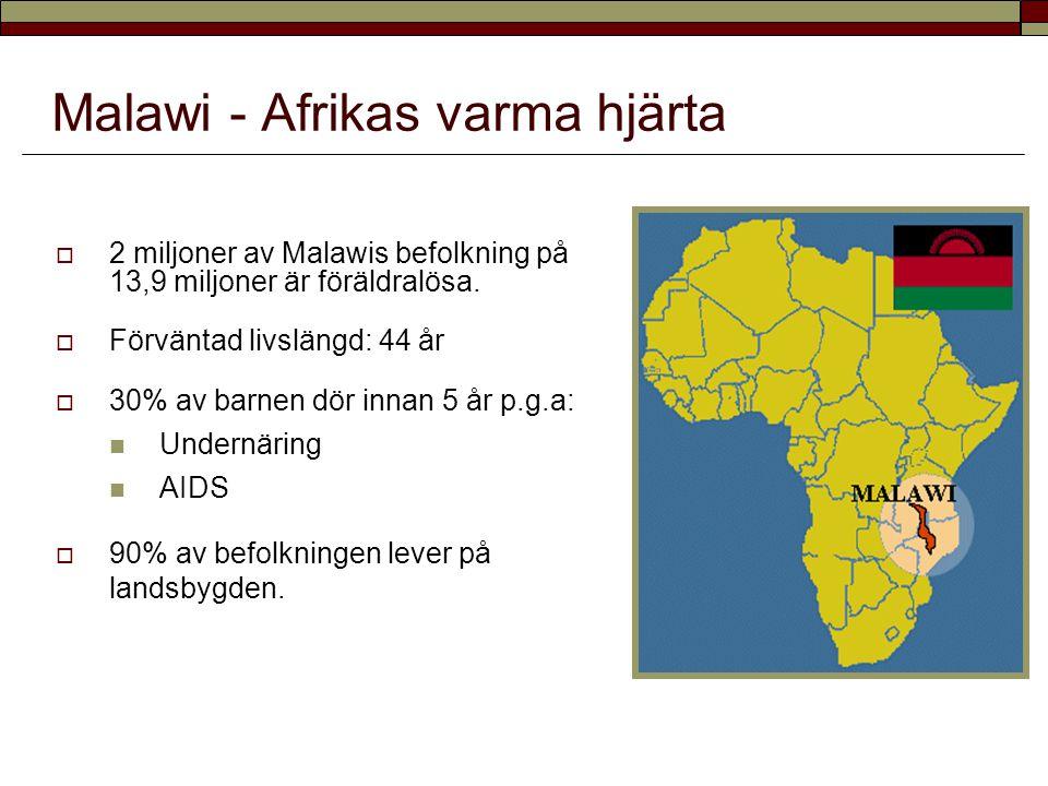  2 miljoner av Malawis befolkning på 13,9 miljoner är föräldralösa.  Förväntad livslängd: 44 år  30% av barnen dör innan 5 år p.g.a: Undernäring AI
