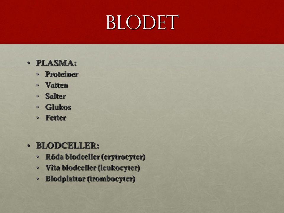 Blodet PLASMA: PLASMA: Proteiner Proteiner Vatten Vatten Salter Salter Glukos Glukos Fetter Fetter BLODCELLER: BLODCELLER: Röda blodceller (erytrocyter) Röda blodceller (erytrocyter) Vita blodceller (leukocyter) Vita blodceller (leukocyter) Blodplattor (trombocyter) Blodplattor (trombocyter)