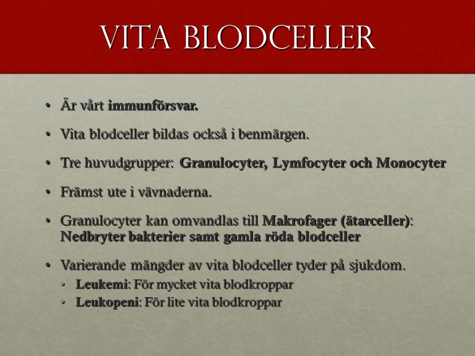 Blodplattor Trombocyterna sköter om koaguleringen.