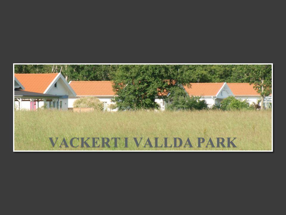 VACKERT I VALLDA PARK