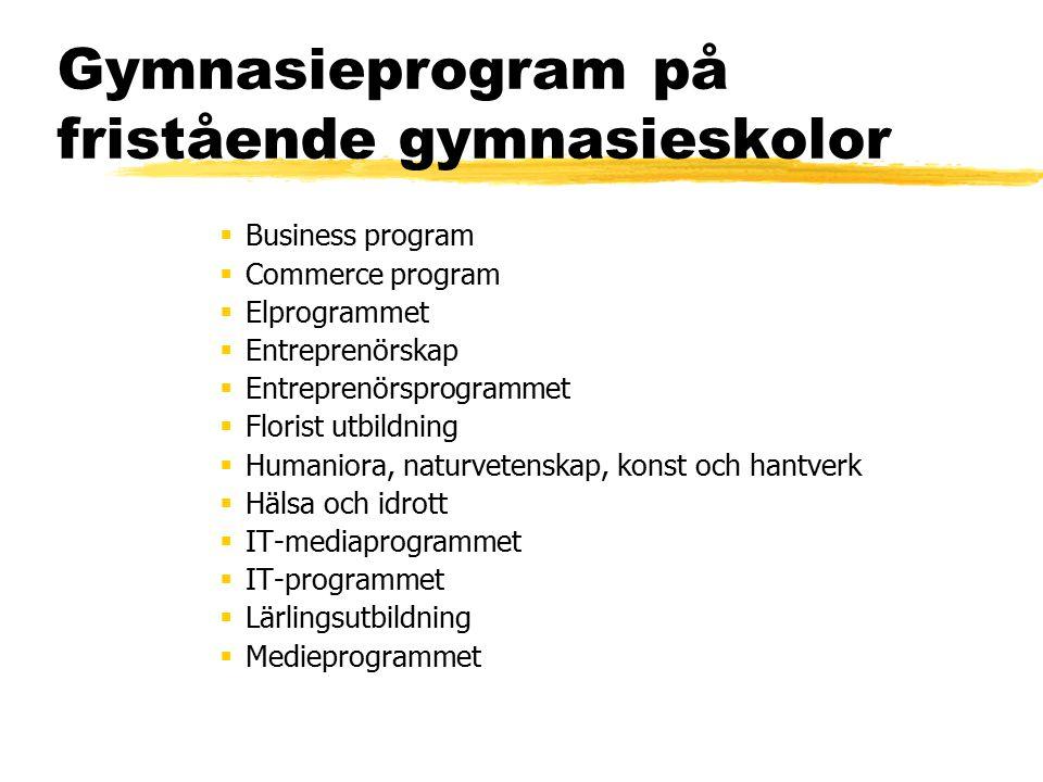 Gymnasieprogram på fristående gymnasieskolor  Business program  Commerce program  Elprogrammet  Entreprenörskap  Entreprenörsprogrammet  Florist