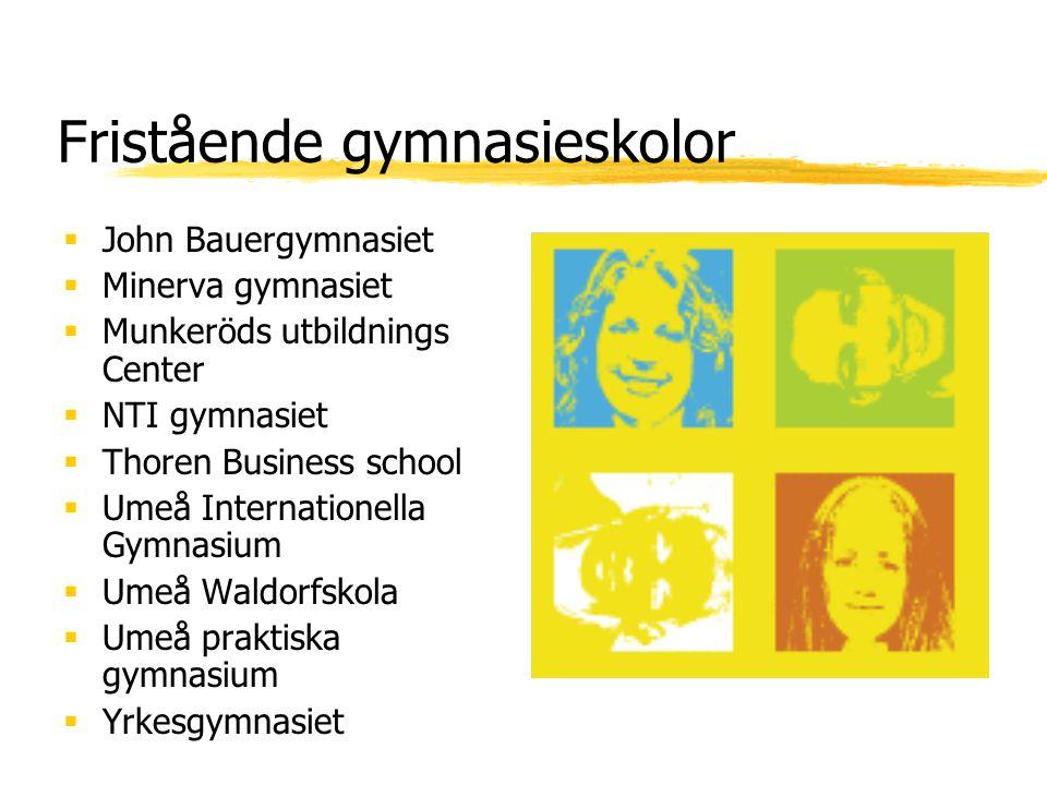 Fristående gymnasieskolor  John Bauergymnasiet  Minerva gymnasiet  Munkeröds utbildnings Center  NTI gymnasiet  Thoren Business school  Umeå Int
