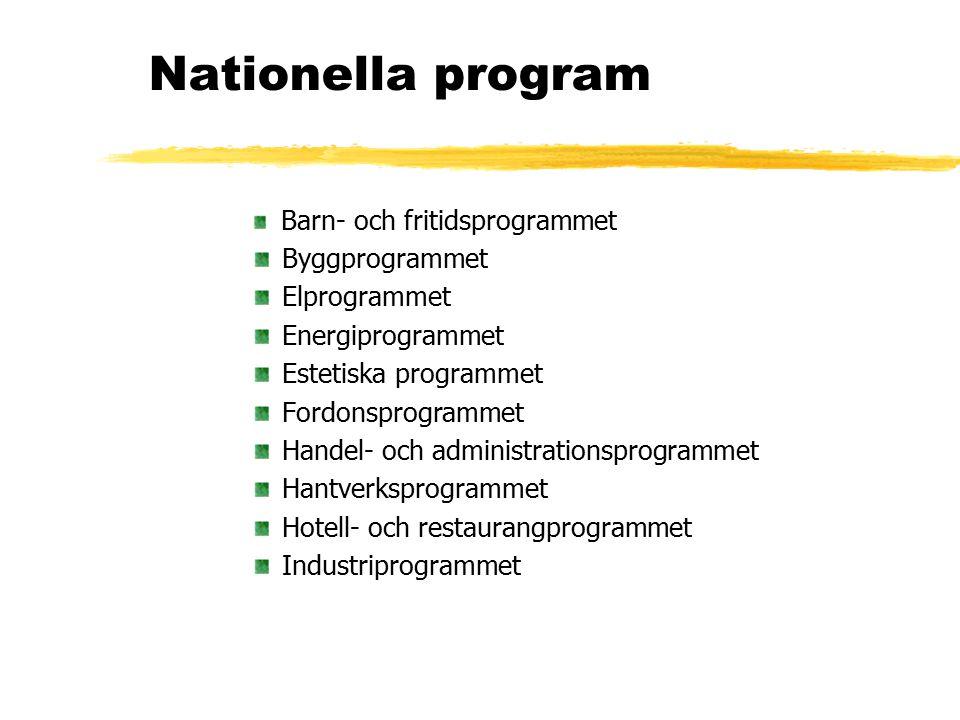 Nationella program, forts Livsmedelsprogrammet Medieprogrammet Naturbruksprogrammet Naturvetenskapsprogrammet Omvårdnadsprogrammet Samhällsvetenskapsprogrammet Teknikprogrammet