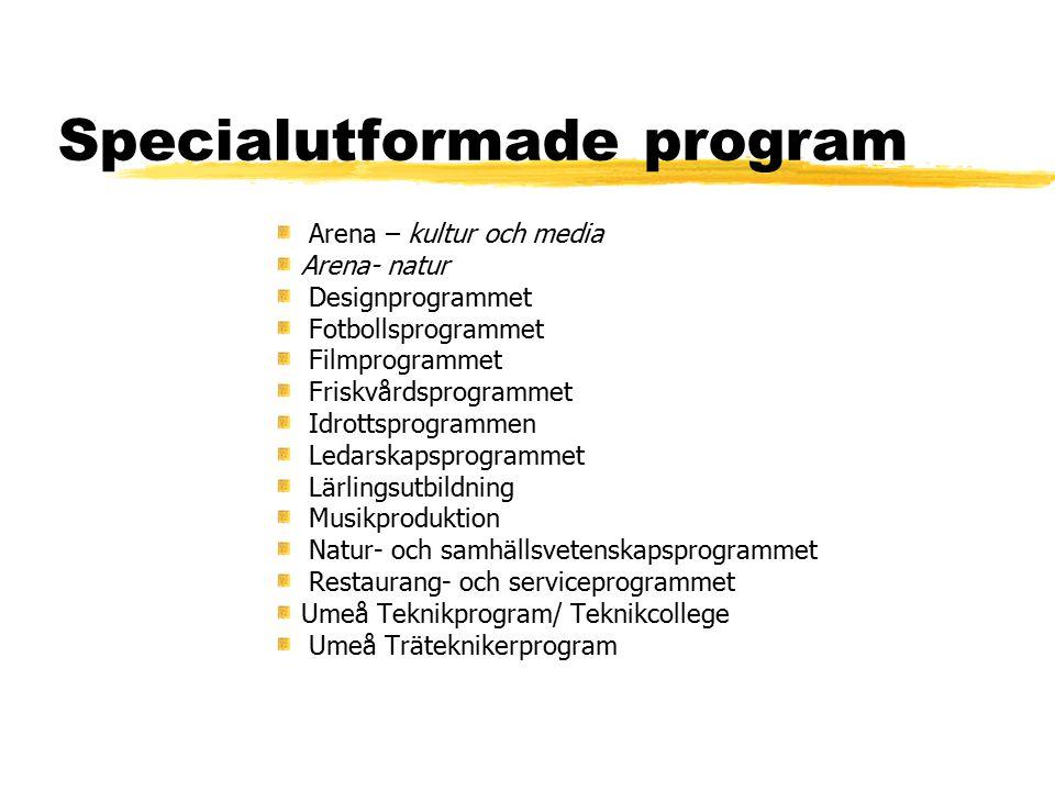 Specialutformade program Arena – kultur och media Arena- natur Designprogrammet Fotbollsprogrammet Filmprogrammet Friskvårdsprogrammet Idrottsprogramm