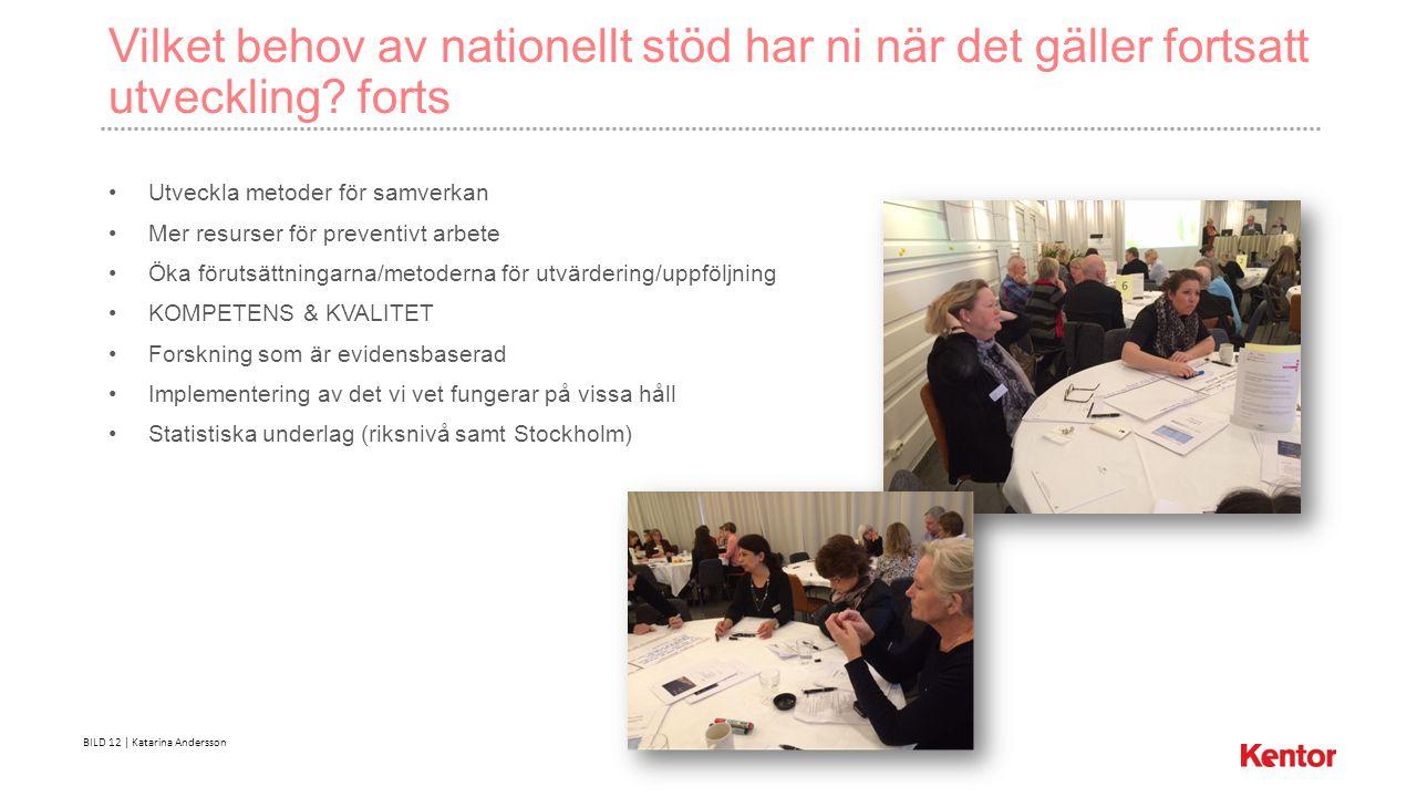 BILD 12 | Katarina Andersson Vilket behov av nationellt stöd har ni när det gäller fortsatt utveckling.