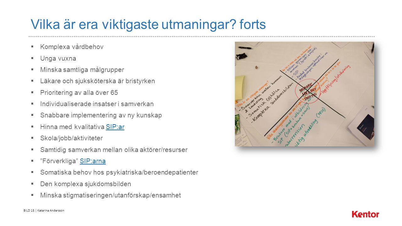 BILD 15 | Katarina Andersson Vilka är era viktigaste utmaningar.