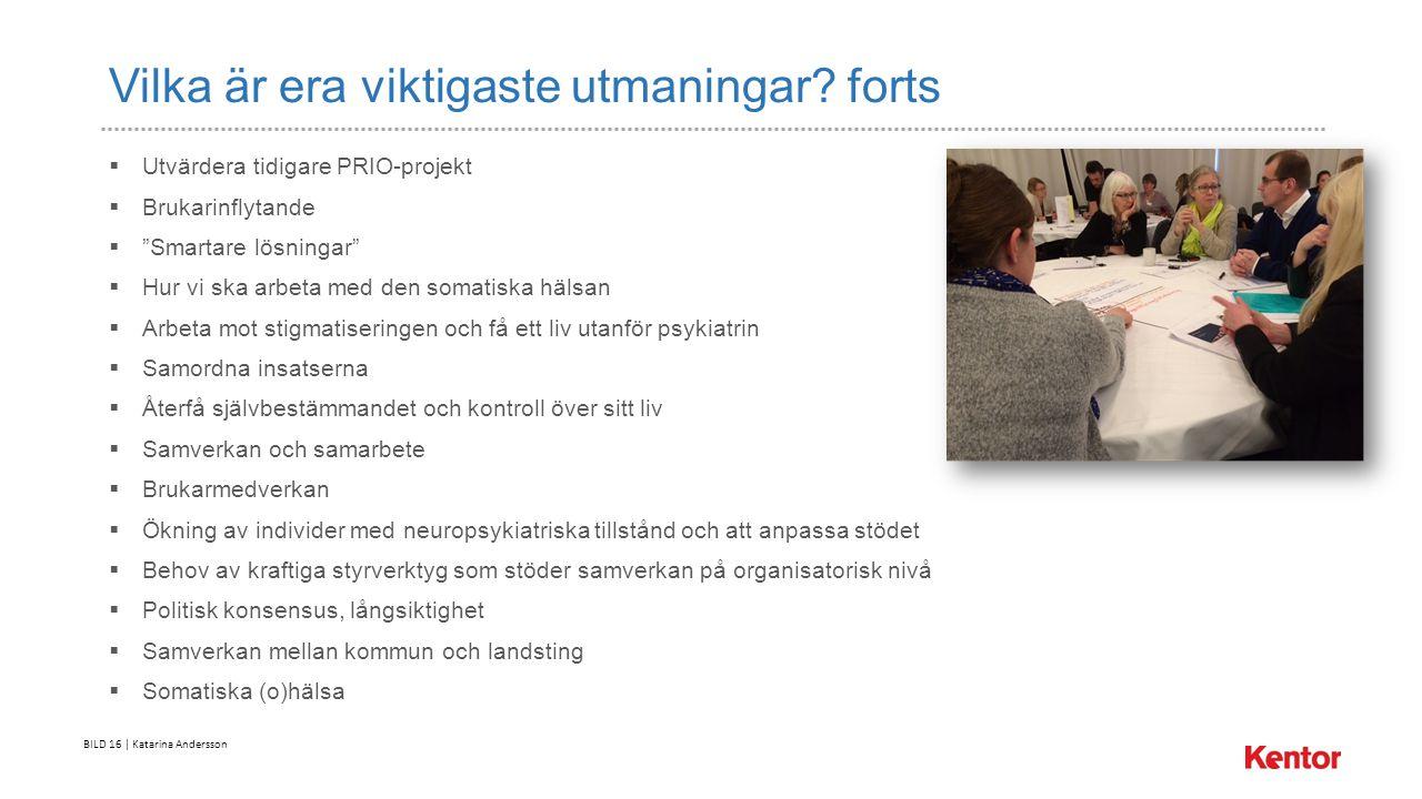 BILD 16 | Katarina Andersson Vilka är era viktigaste utmaningar.