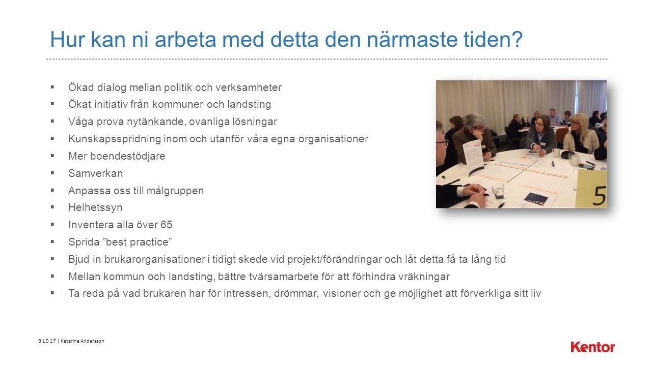 BILD 17 | Katarina Andersson Hur kan ni arbeta med detta den närmaste tiden.