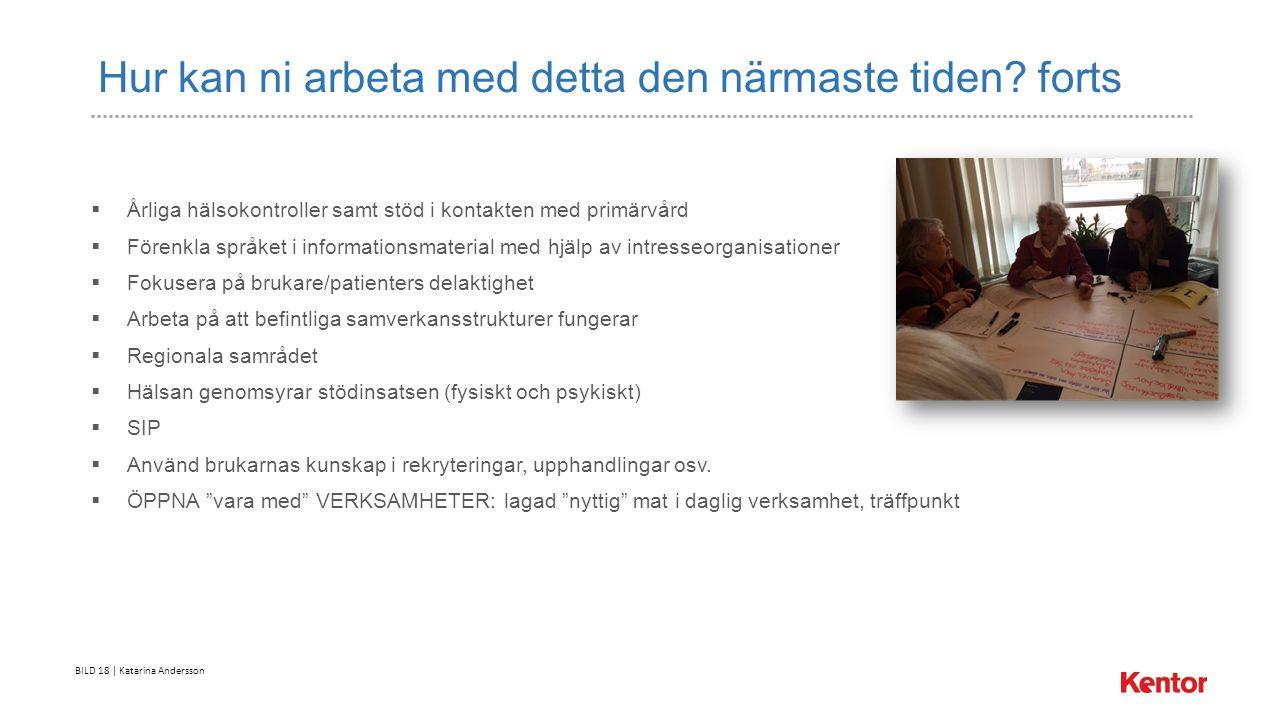 BILD 18 | Katarina Andersson Hur kan ni arbeta med detta den närmaste tiden.