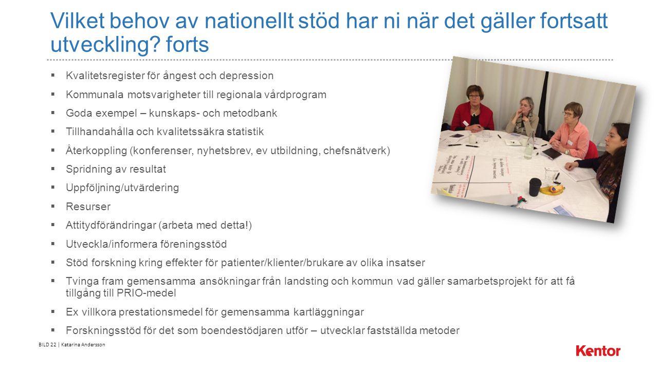 BILD 22 | Katarina Andersson Vilket behov av nationellt stöd har ni när det gäller fortsatt utveckling.
