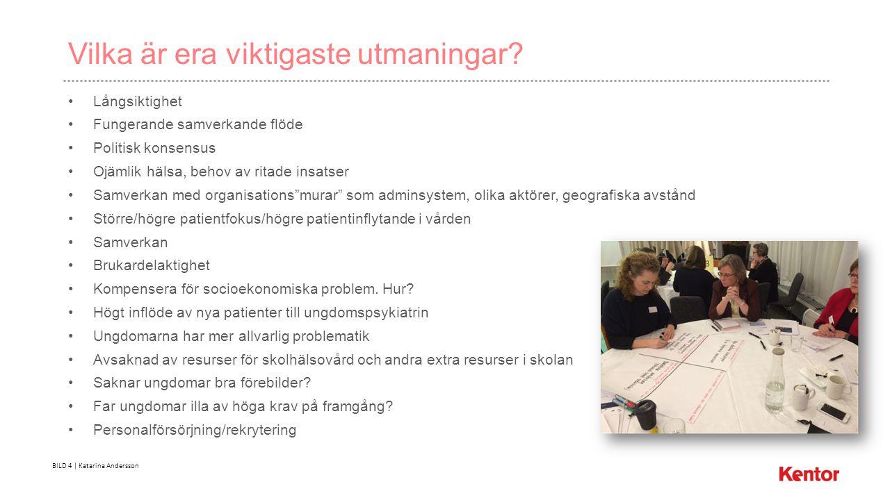 BILD 4 | Katarina Andersson Vilka är era viktigaste utmaningar.