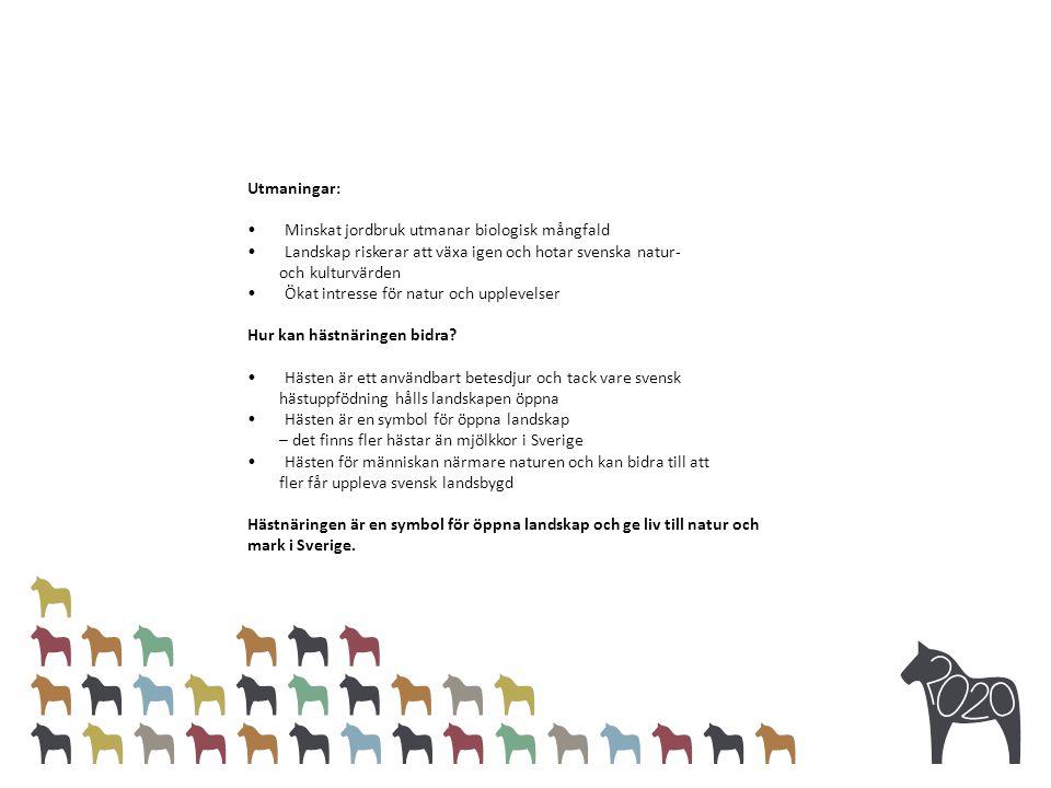 Utmaningar: Minskat jordbruk utmanar biologisk mångfald Landskap riskerar att växa igen och hotar svenska natur- och kulturvärden Ökat intresse för natur och upplevelser Hur kan hästnäringen bidra.