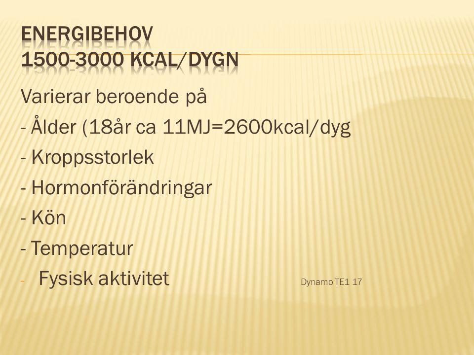 Varierar beroende på - Ålder (18år ca 11MJ=2600kcal/dyg - Kroppsstorlek - Hormonförändringar - Kön - Temperatur - Fysisk aktivitet Dynamo TE1 17