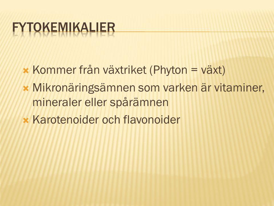  Kommer från växtriket (Phyton = växt)  Mikronäringsämnen som varken är vitaminer, mineraler eller spårämnen  Karotenoider och flavonoider