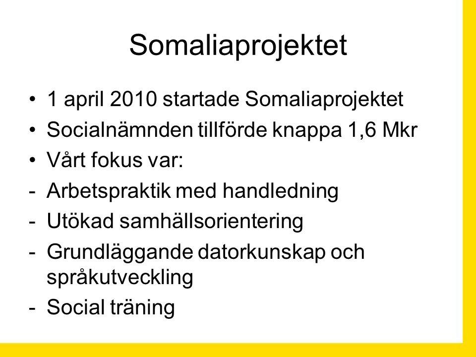 Somaliaprojektet 1 april 2010 startade Somaliaprojektet Socialnämnden tillförde knappa 1,6 Mkr Vårt fokus var: -Arbetspraktik med handledning -Utökad samhällsorientering -Grundläggande datorkunskap och språkutveckling -Social träning