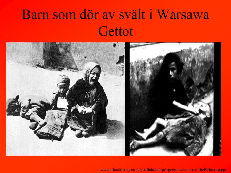 Barn som dör av svält i Warsawa Gettot www.schoolhistory.co.uk/gcselinks/indepth/germany/resources/TheHolocaust.ppt