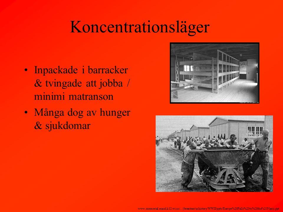 Koncentrationsläger Inpackade i barracker & tvingade att jobba / minimi matranson Många dog av hunger & sjukdomar www.memorial.ecasd.k12.wi.us/.../jbrantner/ushistory/WWII/ppts/Europe%20Falls%20to%20the%20Nazis.ppt