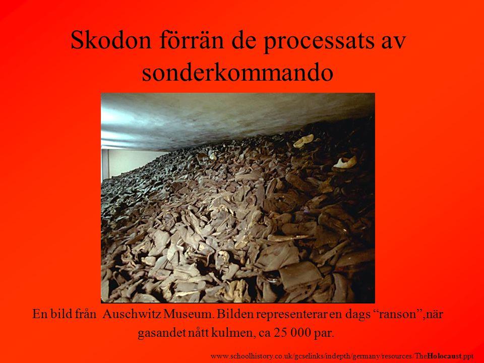 Skodon förrän de processats av sonderkommando En bild från Auschwitz Museum.