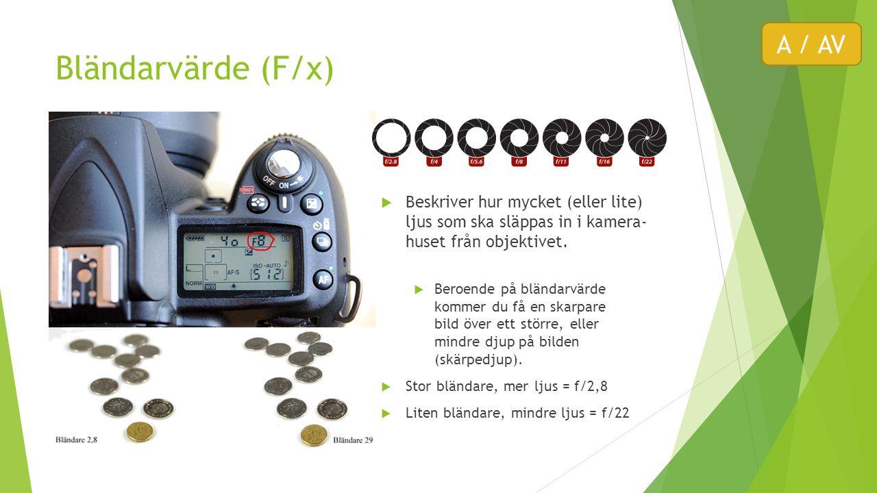 Bländarvärde (F/x)  Beskriver hur mycket (eller lite) ljus som ska släppas in i kamera- huset från objektivet.  Beroende på bländarvärde kommer du f
