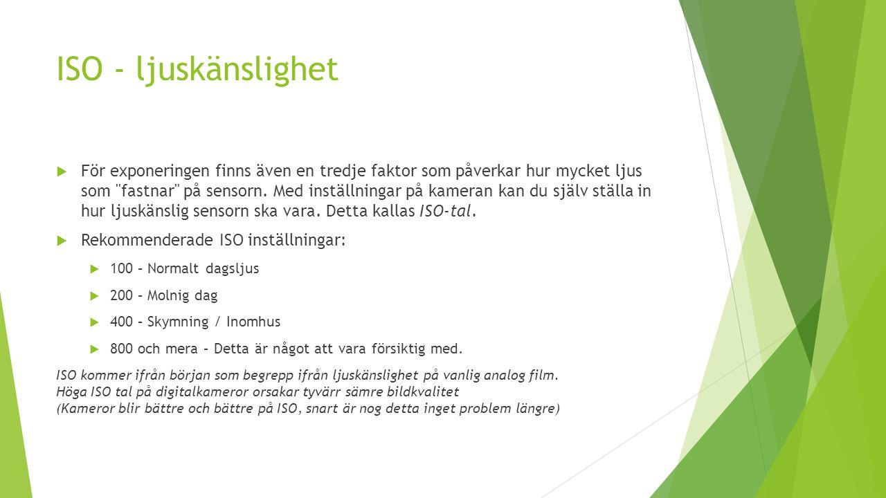 ISO - ljuskänslighet  För exponeringen finns även en tredje faktor som påverkar hur mycket ljus som