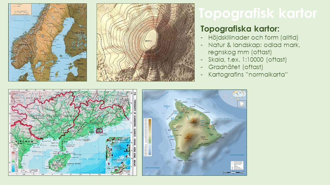 Topografiska kartor: -Höjdskillnader och form (alltid) -Natur & landskap: odlad mark, regnskog mm (oftast) -Skala, t.ex. 1:10000 (oftast) -Gradnätet (