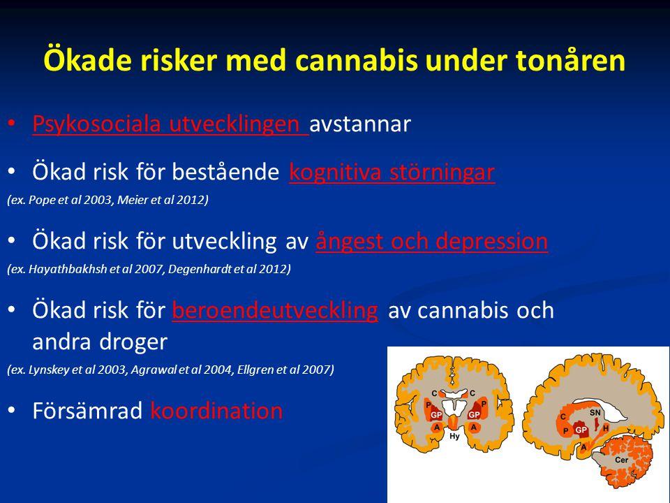 Ökade risker med cannabis under tonåren Psykosociala utvecklingen avstannar Ökad risk för bestående kognitiva störningar (ex. Pope et al 2003, Meier e