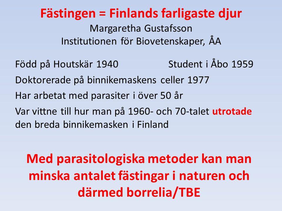 Fästingen = Finlands farligaste djur Margaretha Gustafsson Institutionen för Biovetenskaper, ÅA Född på Houtskär 1940 Student i Åbo 1959 Doktorerade p