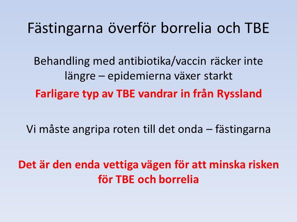 Fästingarna överför borrelia och TBE Behandling med antibiotika/vaccin räcker inte längre – epidemierna växer starkt Farligare typ av TBE vandrar in f