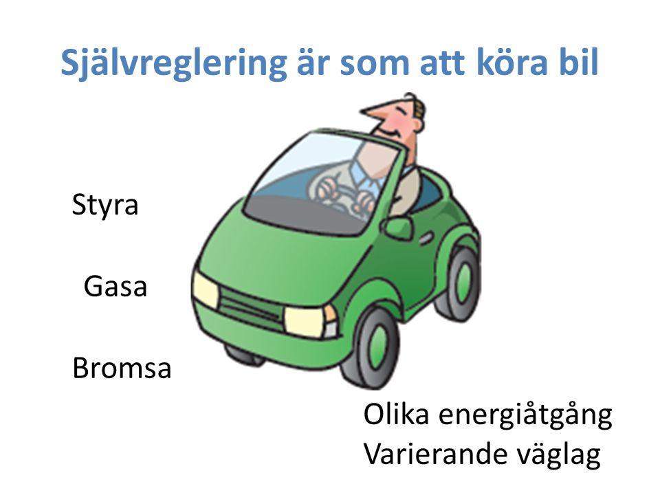 Självreglering är som att köra bil Gasa Bromsa Olika energiåtgång Varierande väglag Styra