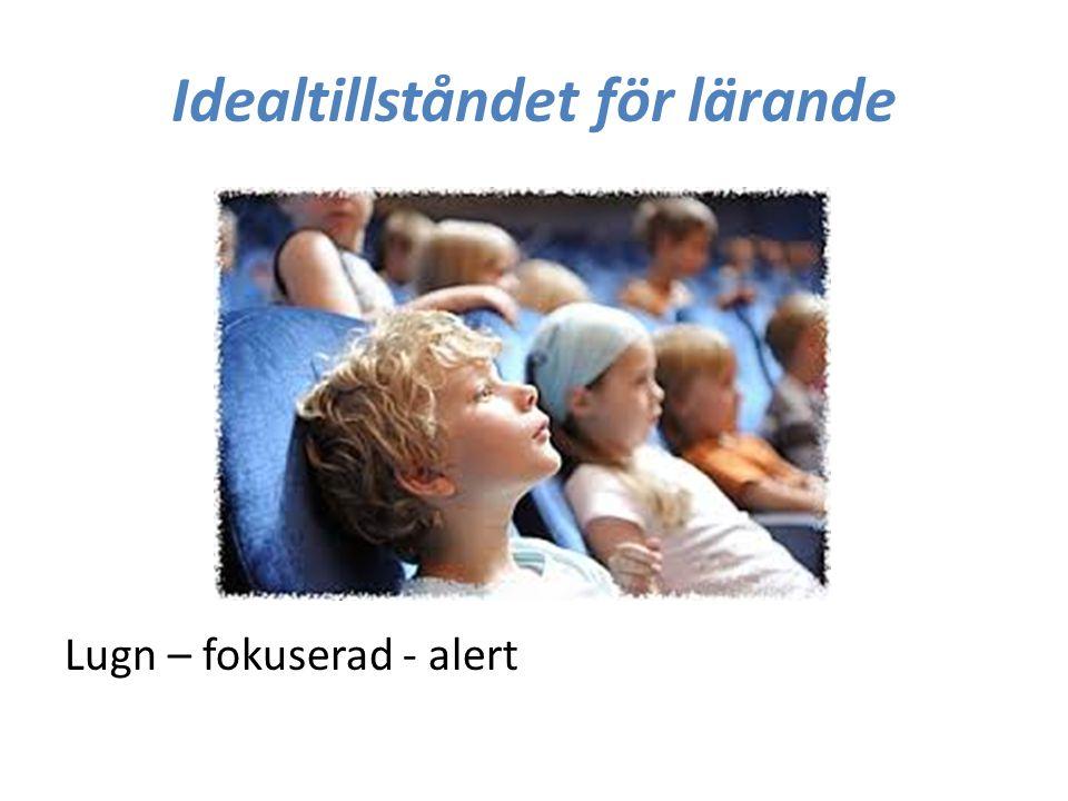 Idealtillståndet för lärande Lugn – fokuserad - alert