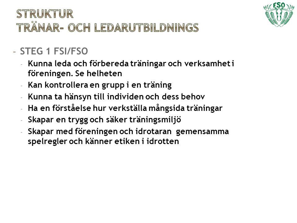 - STEG 2 FSI/FSO/SSL finska förbundet - Planera och verkställa en tävlings- och träningsperiod - Har en uppfattning om idrottarens fysiska och psykiska utveckling - Kan träna målmedvetet individer och grupper - Håller träningar och fungerar som en del av gruppen - Uppfattar idrotten som helhet där ingår hela livet - Tar hänsyn i och är i växelverkan med idrottaren - Har en tränarfilosofi