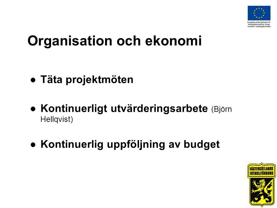 Organisation och ekonomi Täta projektmöten Kontinuerligt utvärderingsarbete (Björn Hellqvist) Kontinuerlig uppföljning av budget