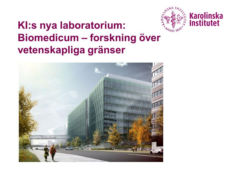 Biomedicum Ritning över våningsplan med laboratorium