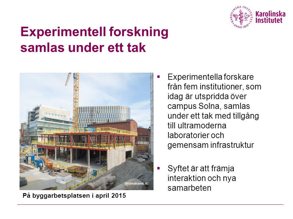 Experimentell forskning samlas under ett tak  Experimentella forskare från fem institutioner, som idag är utspridda över campus Solna, samlas under ett tak med tillgång till ultramoderna laboratorier och gemensam infrastruktur  Syftet är att främja interaktion och nya samarbeten På byggarbetsplatsen i april 2015 Bildmakarna, KI