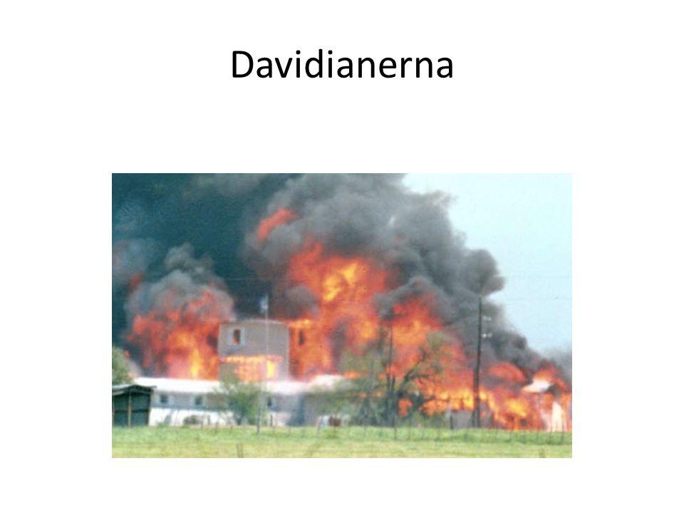 Davidianerna