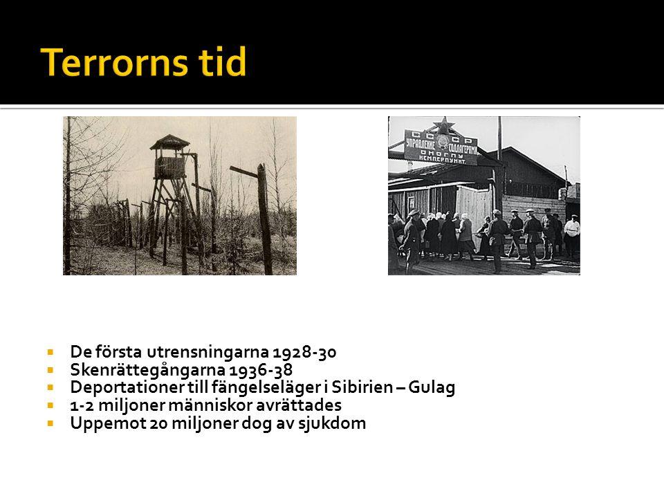  De första utrensningarna 1928-30  Skenrättegångarna 1936-38  Deportationer till fängelseläger i Sibirien – Gulag  1-2 miljoner människor avrättades  Uppemot 20 miljoner dog av sjukdom