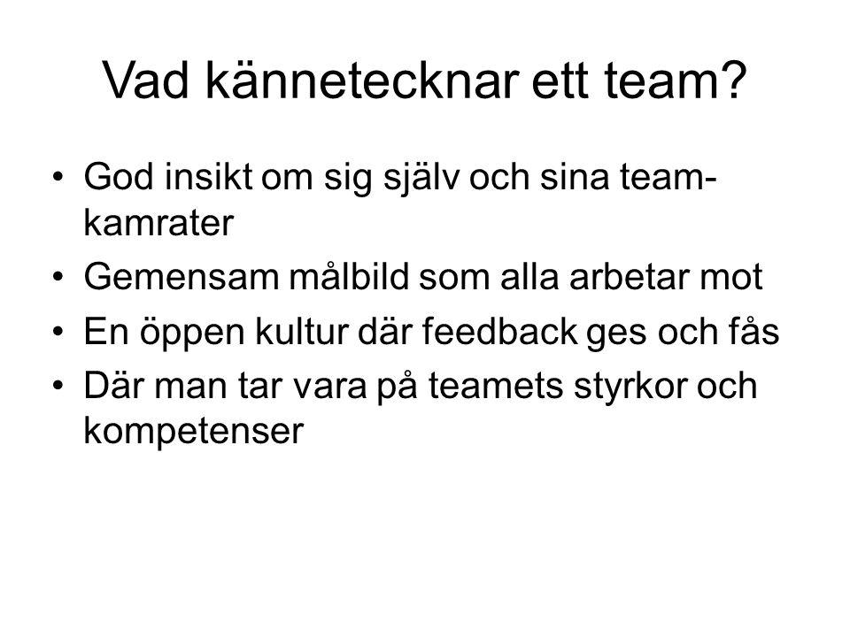Vad kännetecknar ett team? God insikt om sig själv och sina team- kamrater Gemensam målbild som alla arbetar mot En öppen kultur där feedback ges och